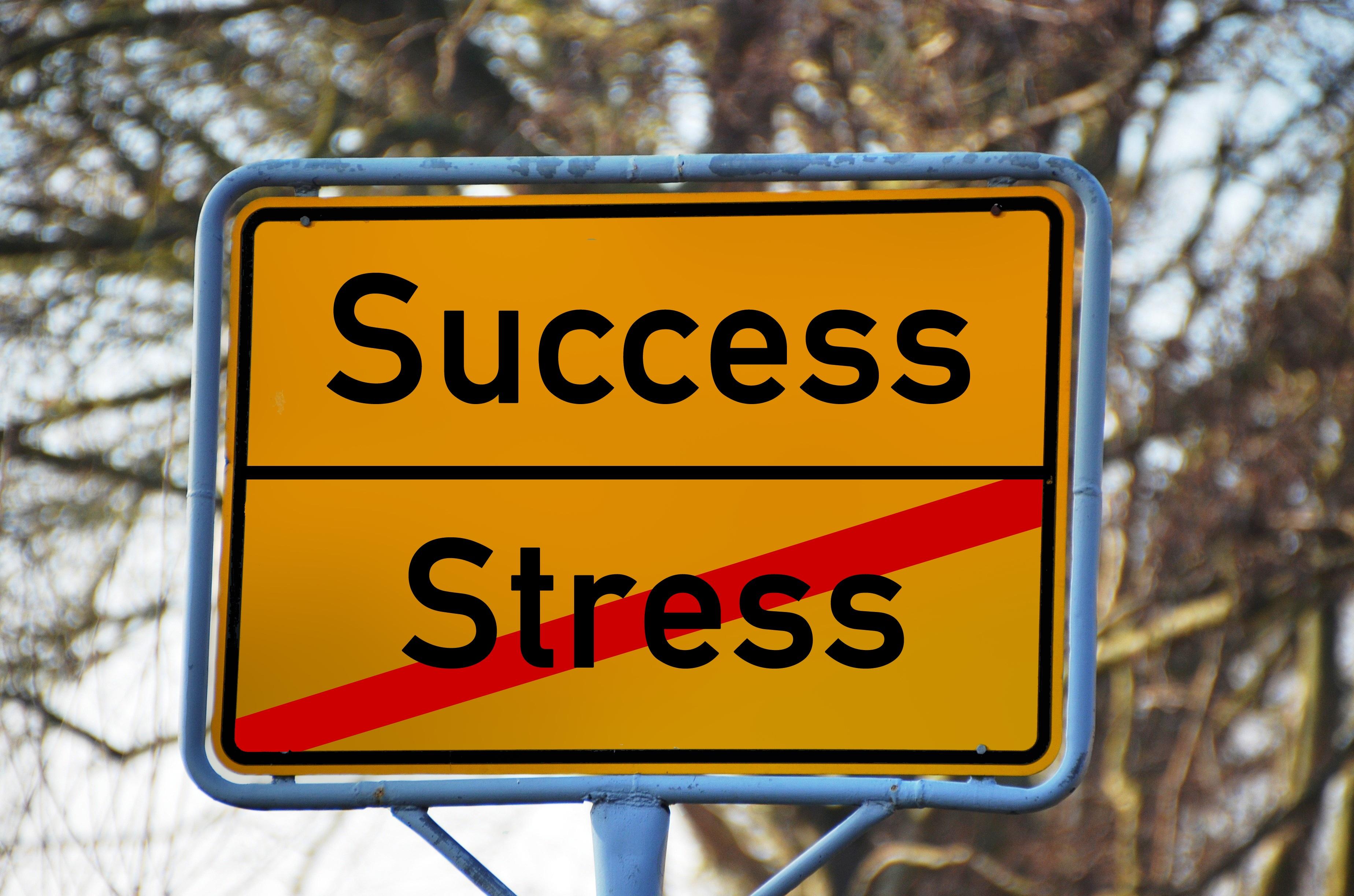 Att förebygga utmattningssyndrom och andra stressrelaterade sjukdomar